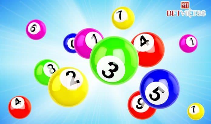 Khám phá cách chơi Bingo online