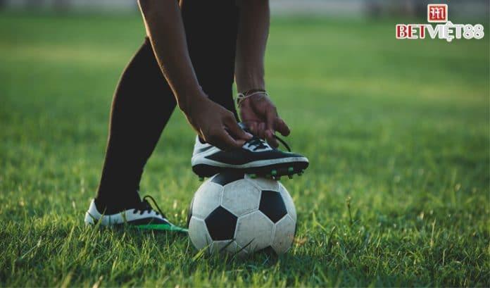 Top những phần mềm cá độ bóng đá trực tuyến