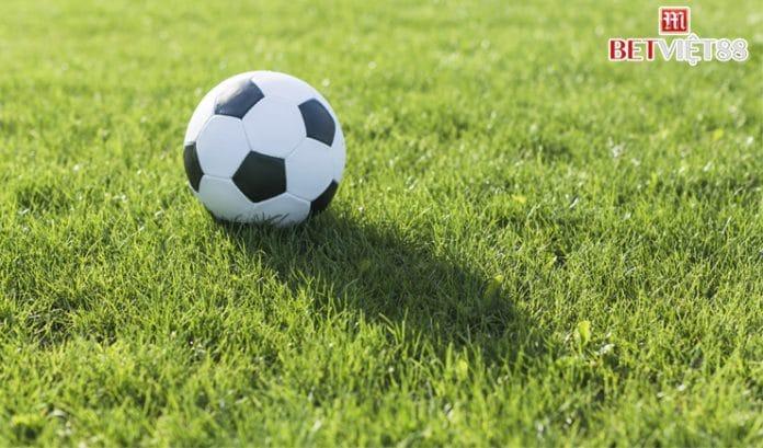Tìm hiểu cách kiếm cỏ trong bóng đá